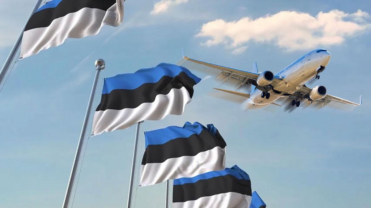 эстония флаги самолет