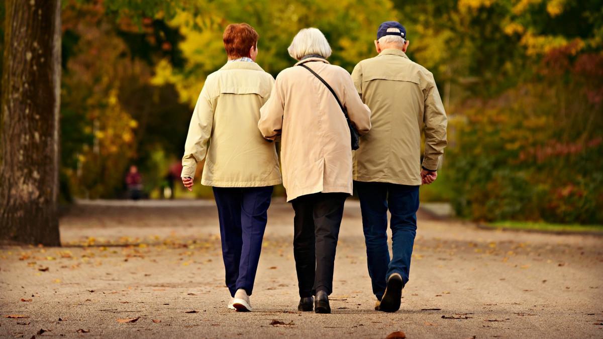 пожилые люди гуляют в парке