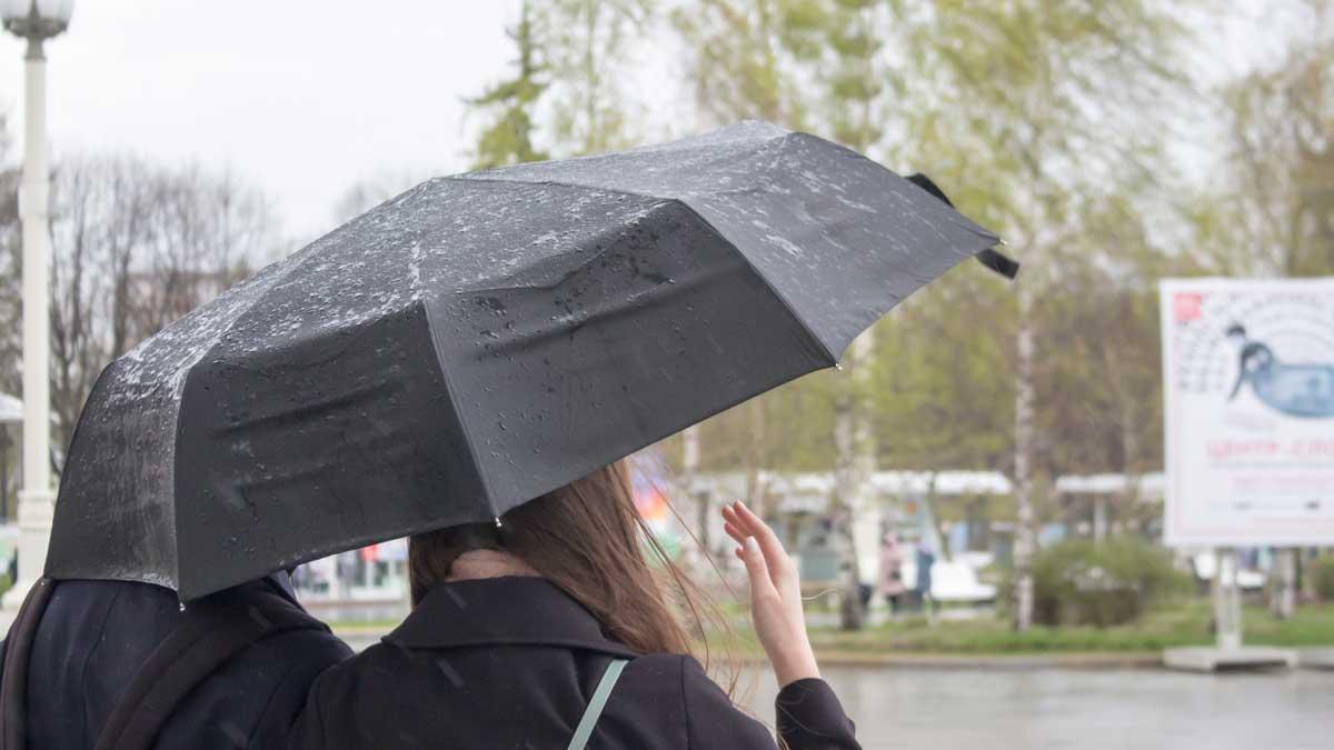 Теплую погоду с небольшими осадками обещают москвичам 14 июня