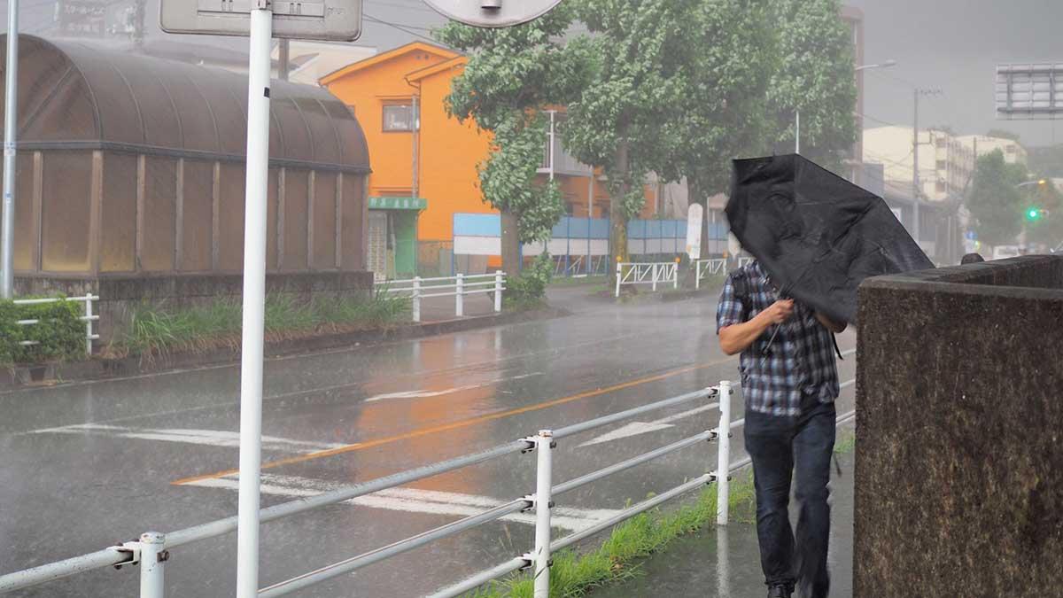 сильный ветер ураган мужчина зонтик дождь