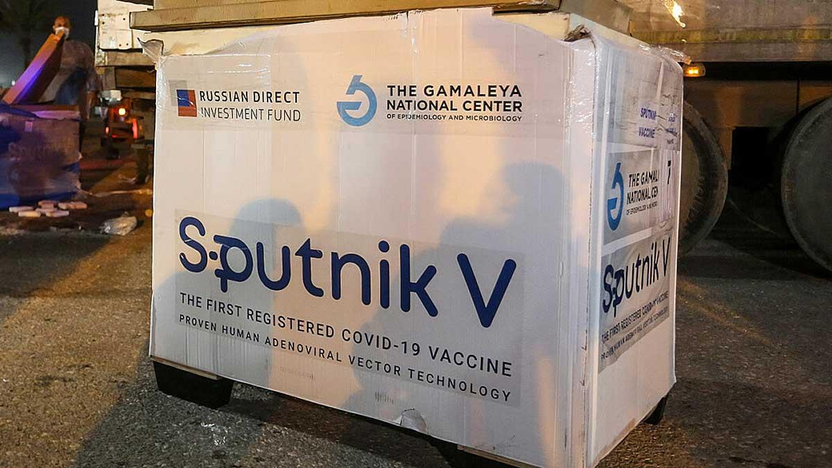 вакцина sputnik v ящик коробка box