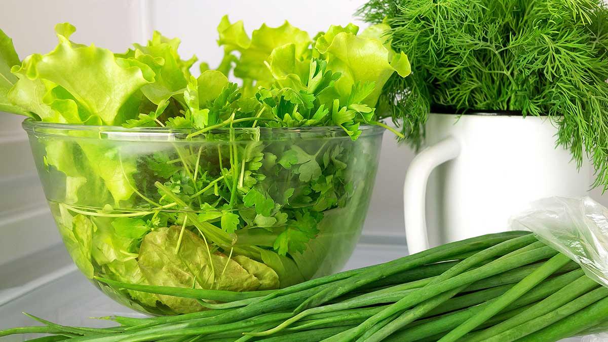 зелень лук хранение контейнер холодильник