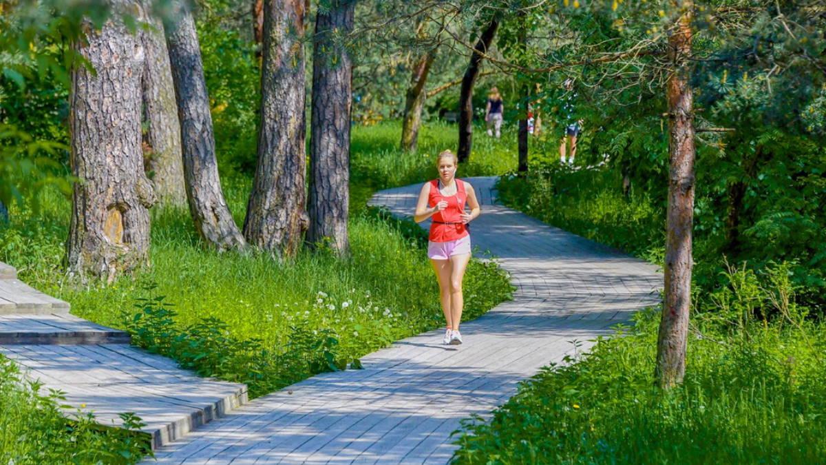 Москва парк пробежка