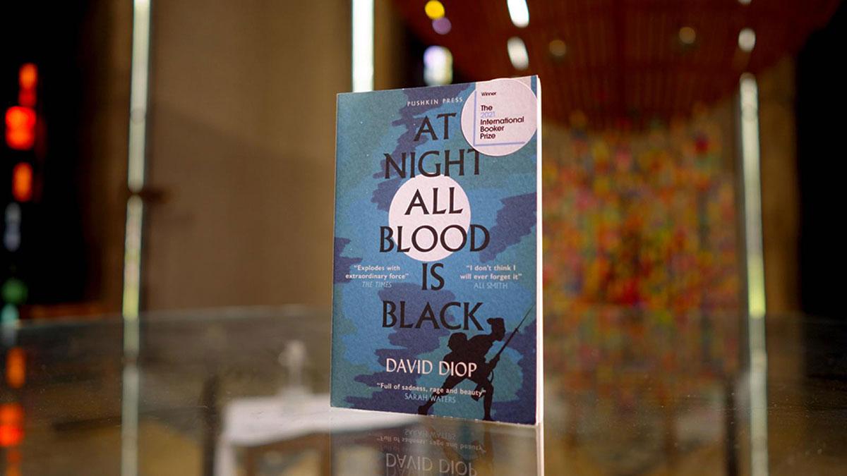 David Diop книга французского писателя Ночью любая кровь черна