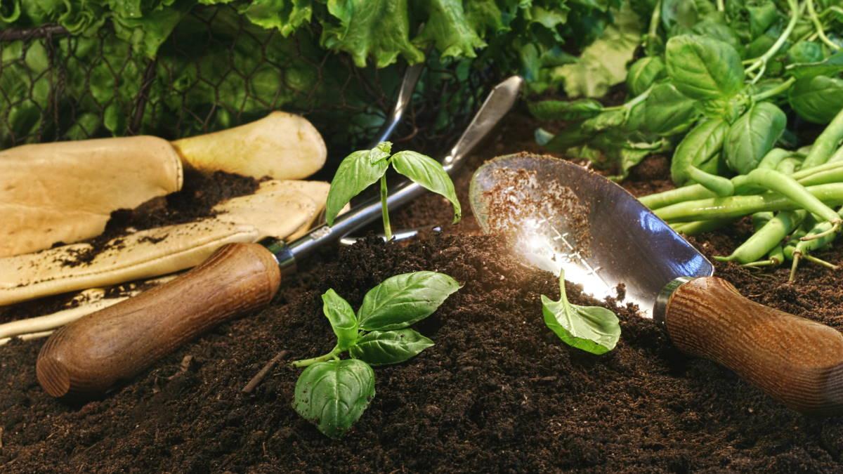 Садоводство огород дача