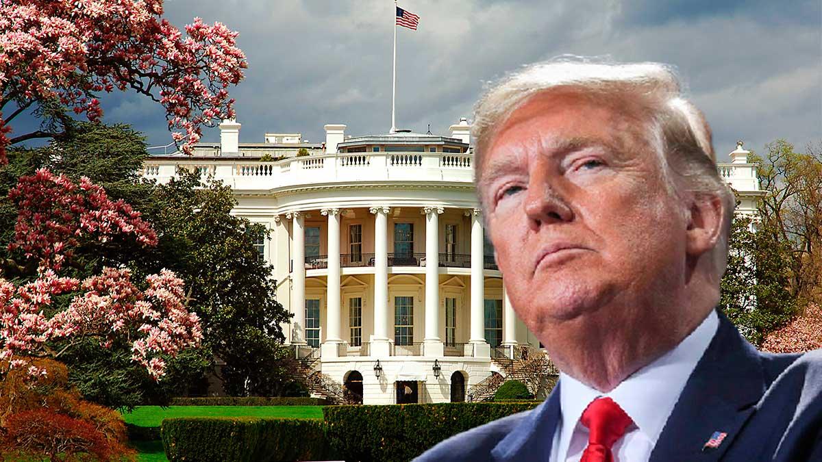 Дональд Трамп Белый дом