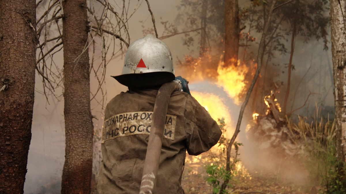 МЧС пожар