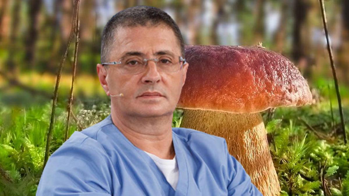 белый гриб боровик и Александр Мясников
