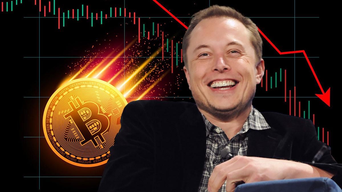 шутка Илона Маска курс биткоин падает