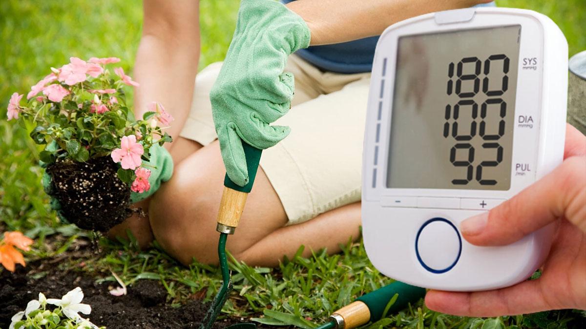 повышенное давление и работа в саду огород