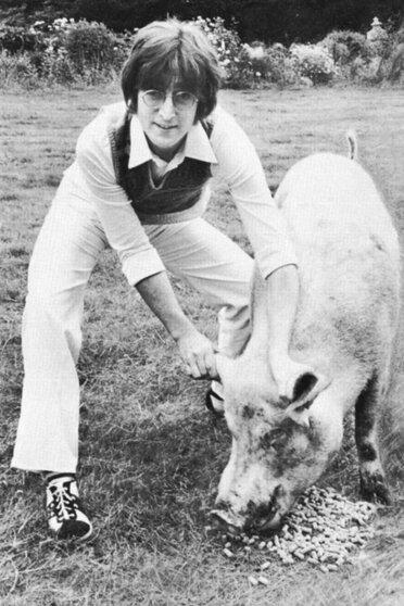 Джон Леннон сфотографировался, держа за уши свинью, пародируя обложку недавнего альбома Маккартни Ram