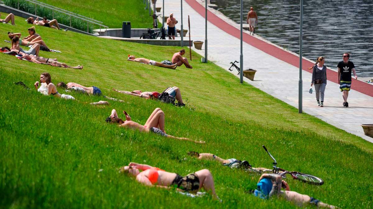 люди загорают лежат на траве