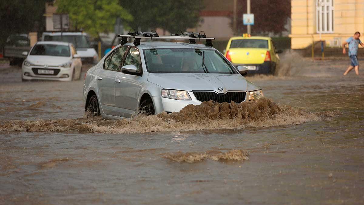 машины потоп город человек
