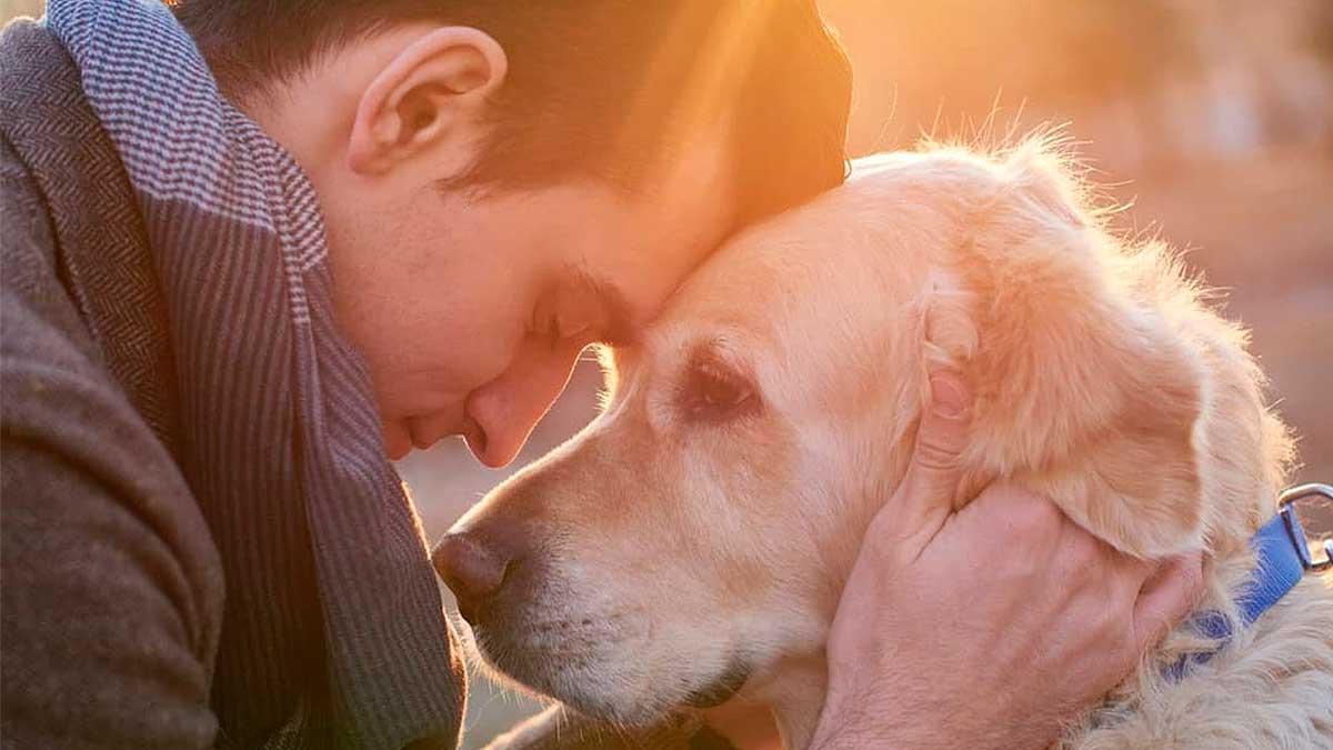мужчина обнимает собаку