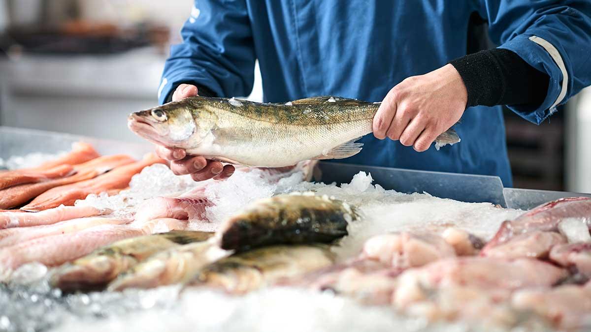 продавец замороженная рыба