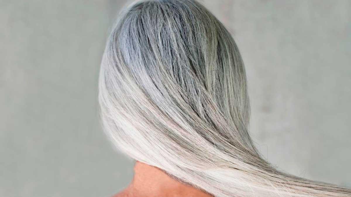 седые волосы вид сзади