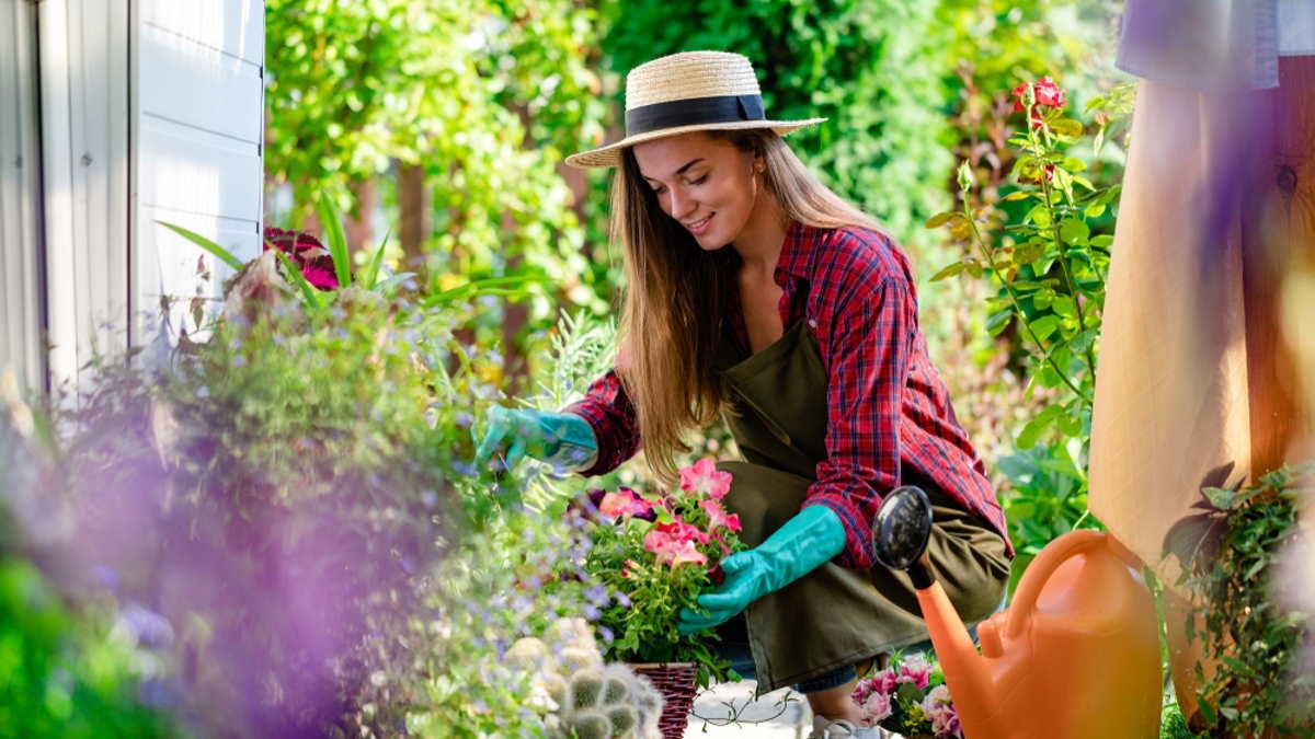 женщина сад огород растения цветы