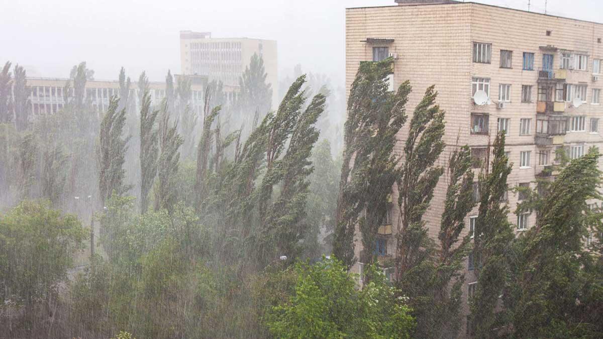 сильный ветер дождь дома деревья