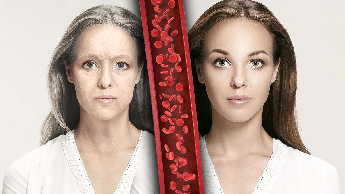 преждевременное старение красные кровяные тельца