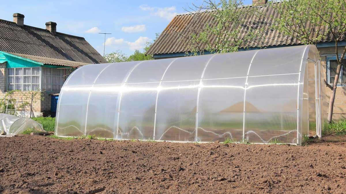 теплица на даче огород дом