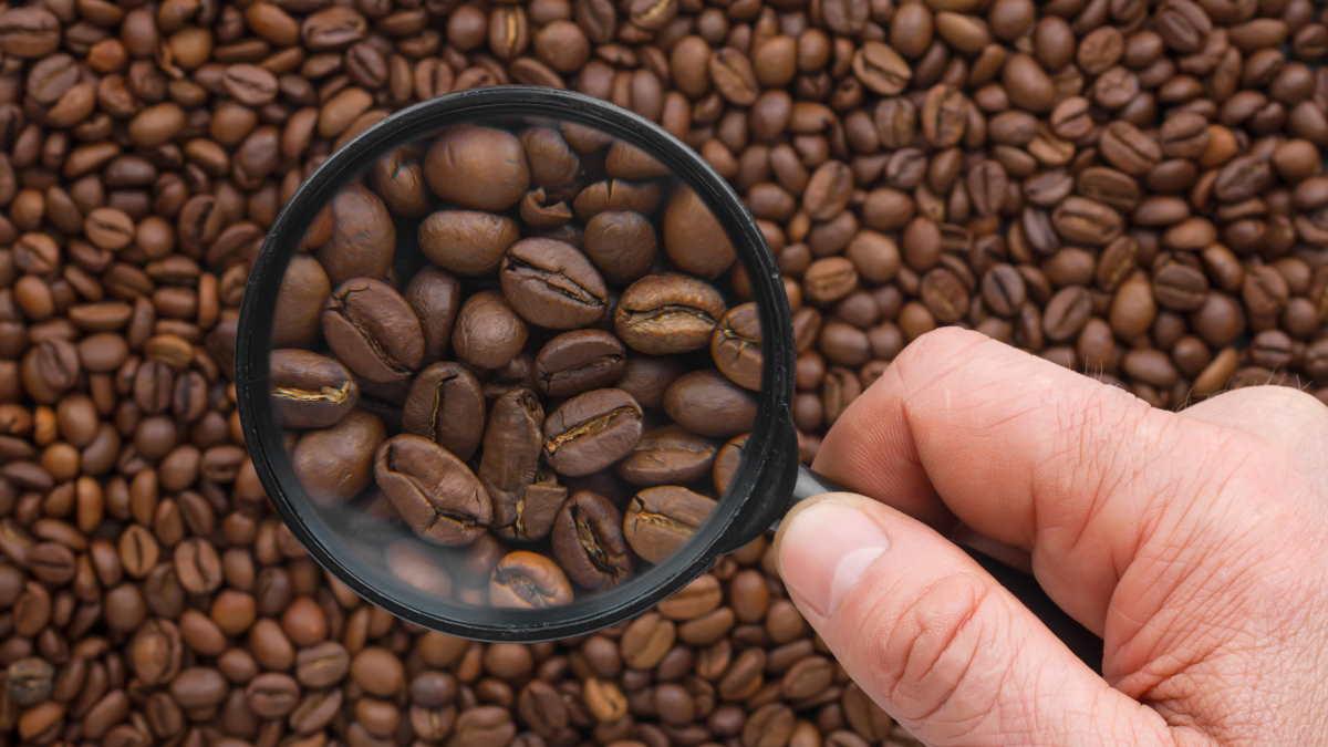 Зерновой кофе лупа
