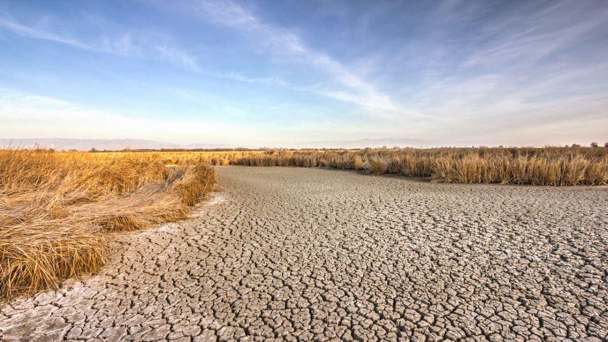Засуха пересохший водоём