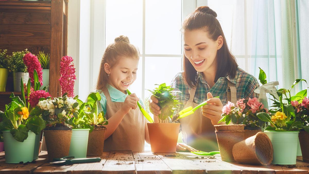 Мама и дочка сажают комнатные растения