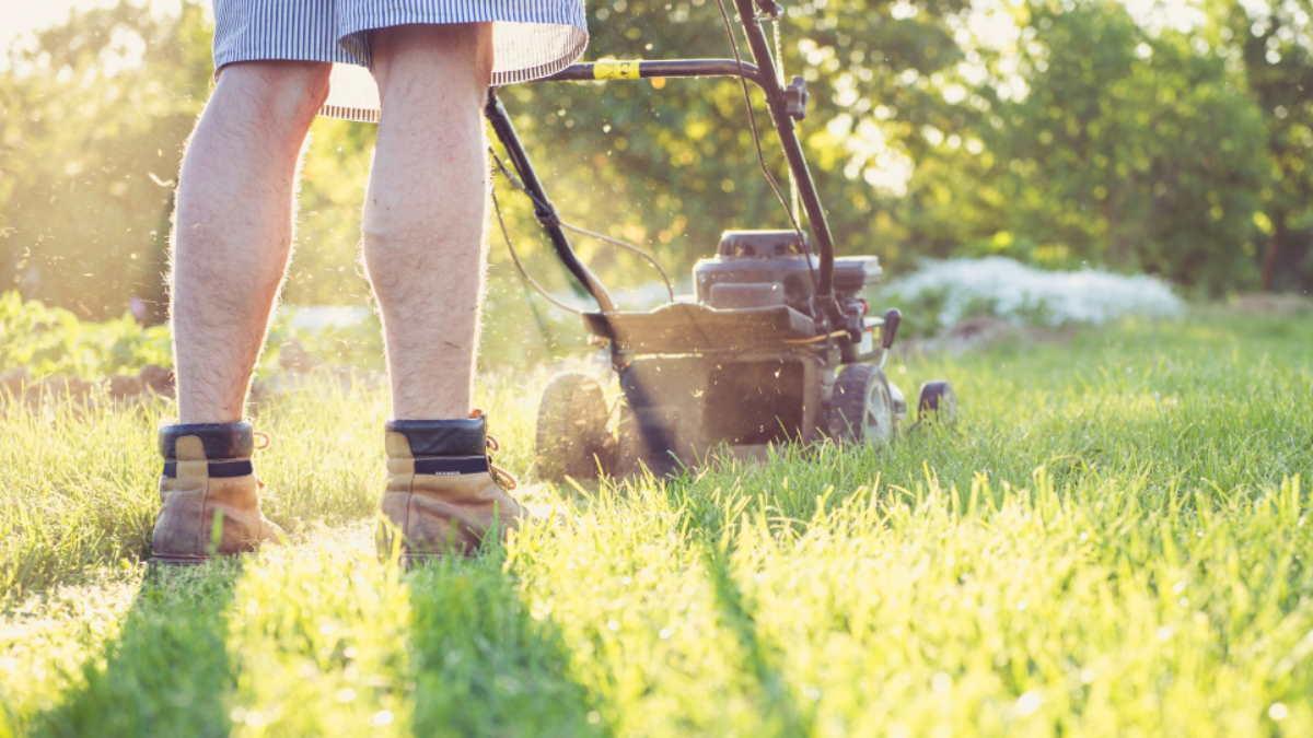 подстригать газон