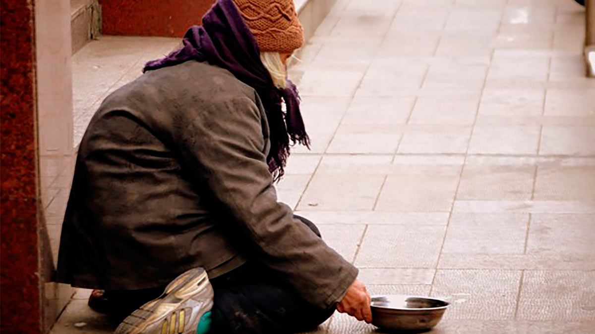 бездомный миска