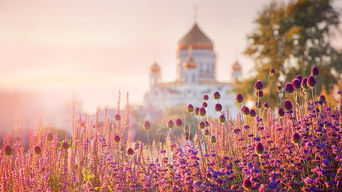 церковь цветы