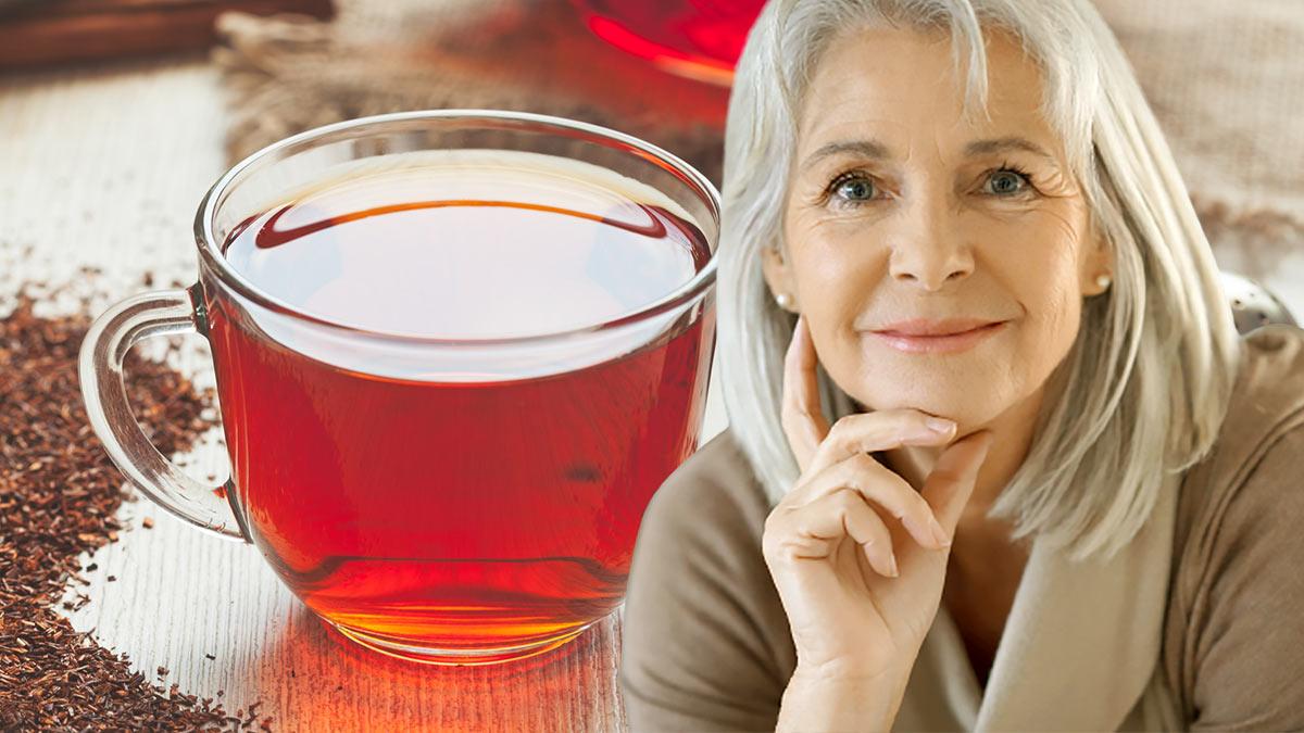 чай ройбуш долголетие