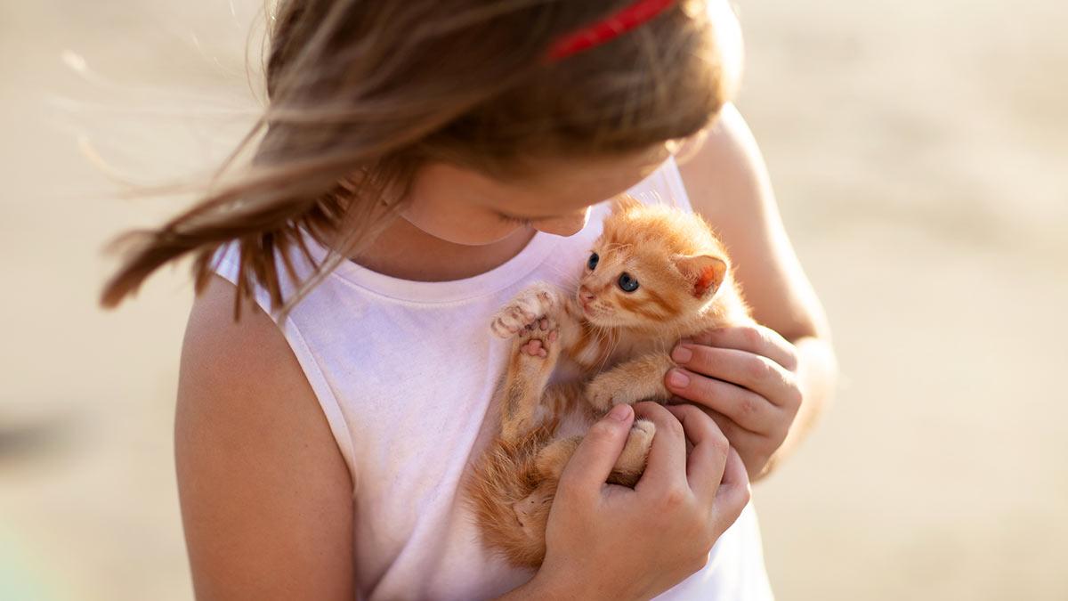 девочка держит рыжего котенка