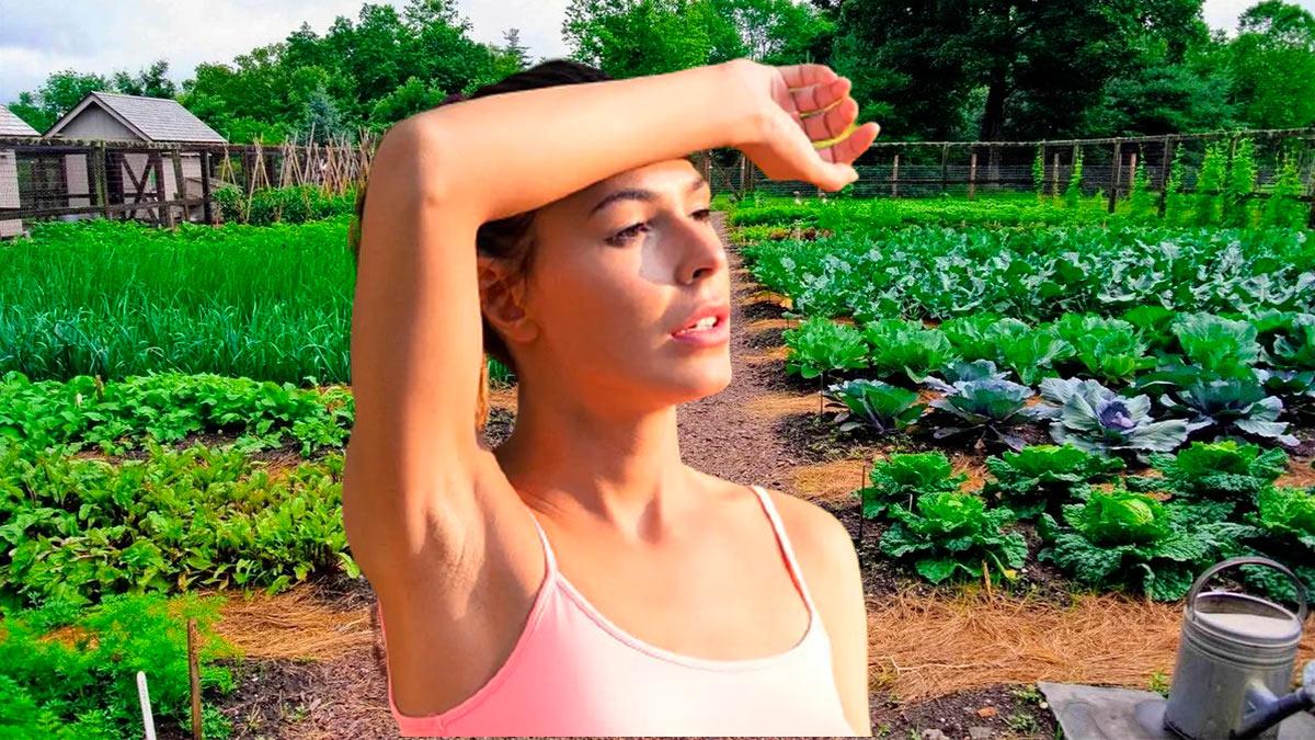 девушка жарко огород капустка лейка