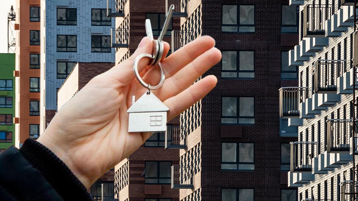 квартиры жилье