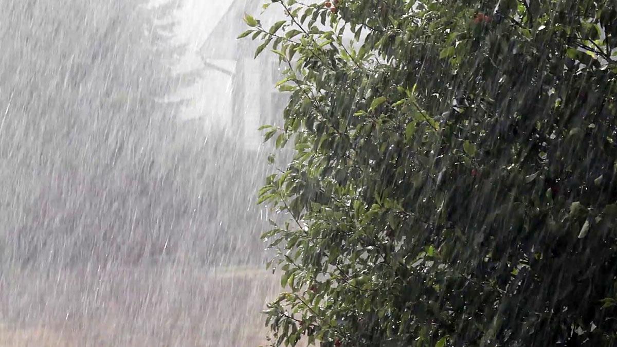 сильный дождь непогода ливень