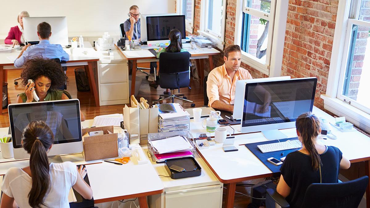 люди офис