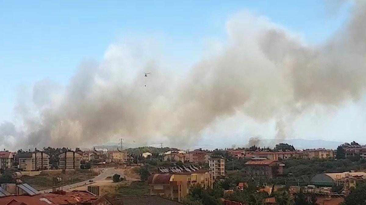 Турция лесные пожары