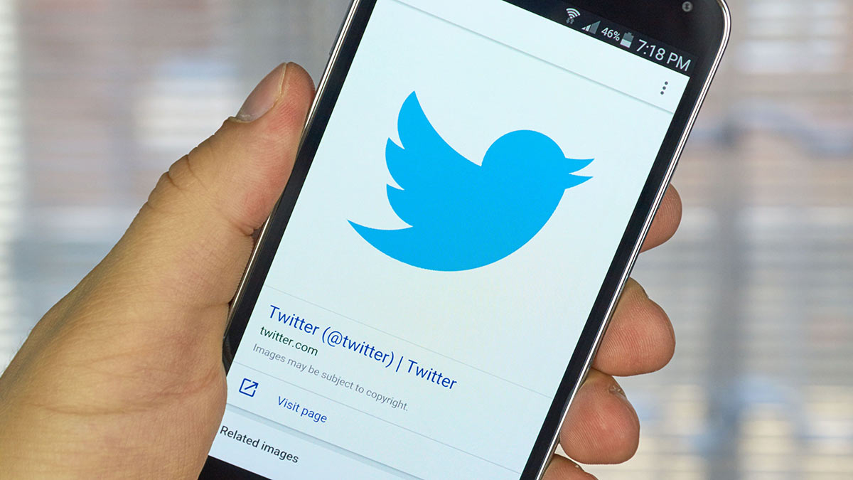 twitter логотип соцсети на экране смартфона