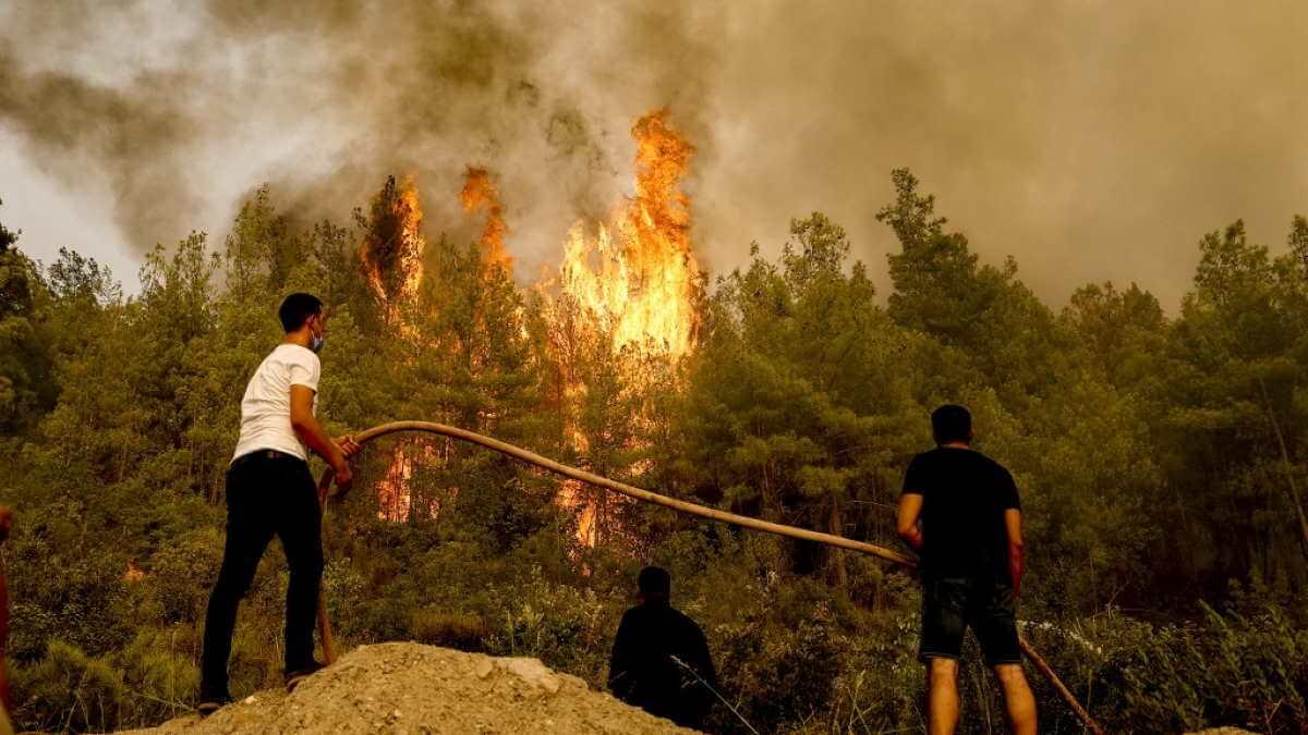 Турция лесной пожар
