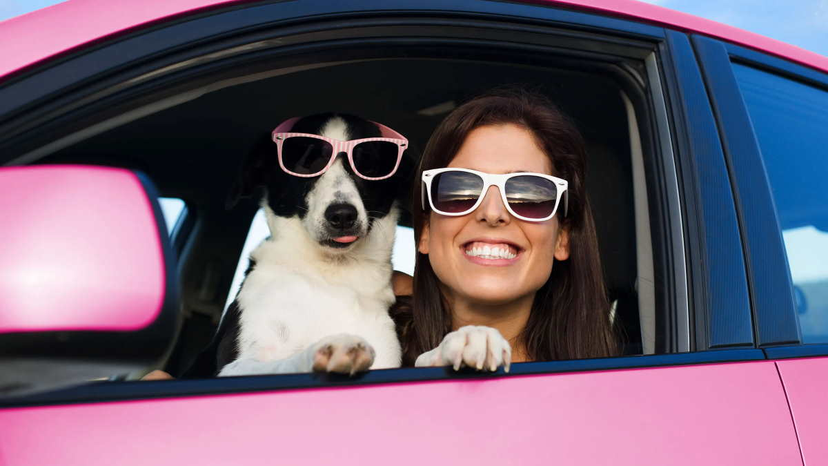 собака и девушка в автомобиле