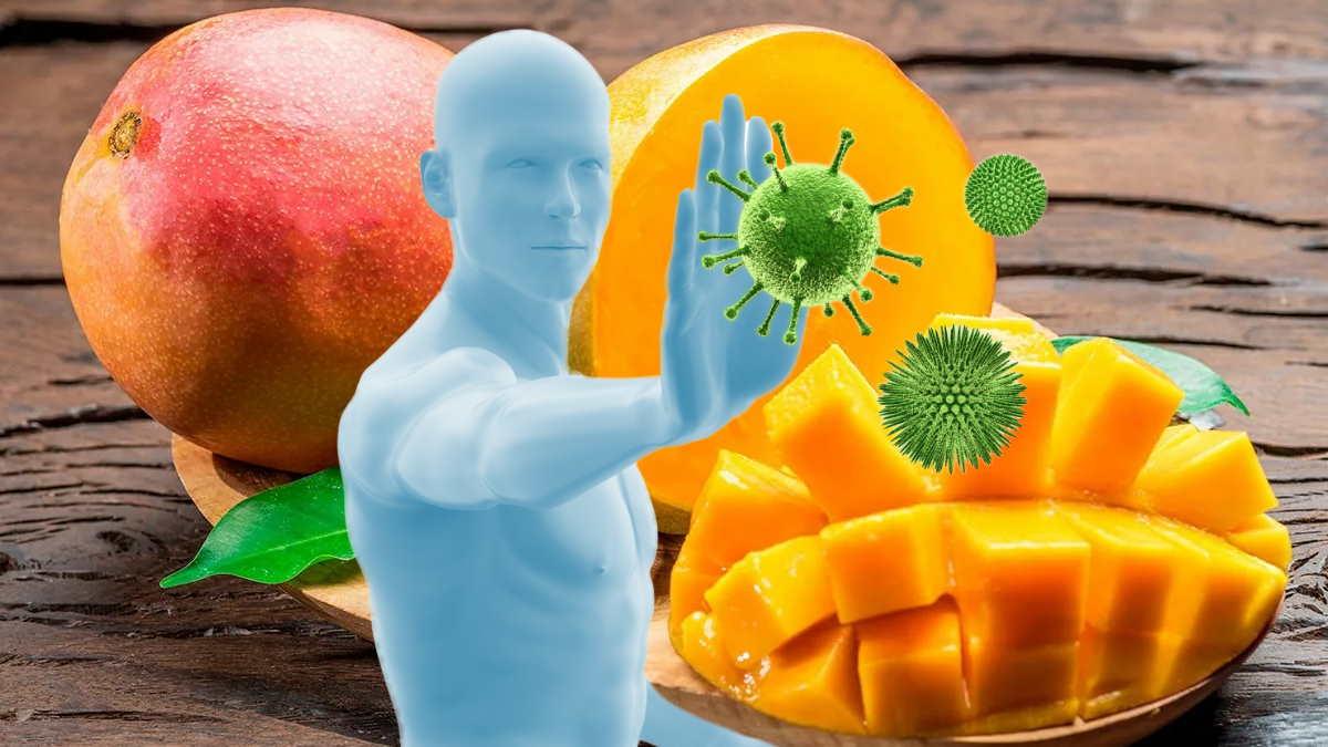 манго и иммунитет
