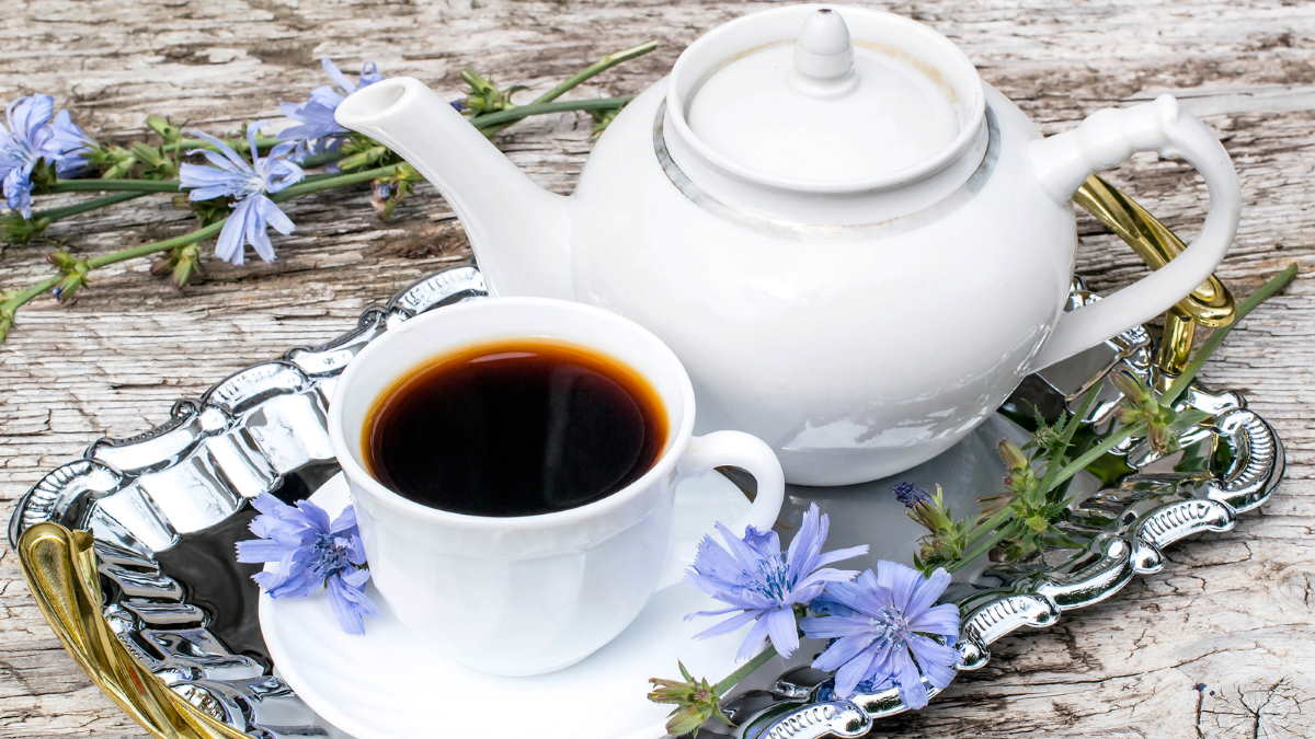 Цикорий кофе