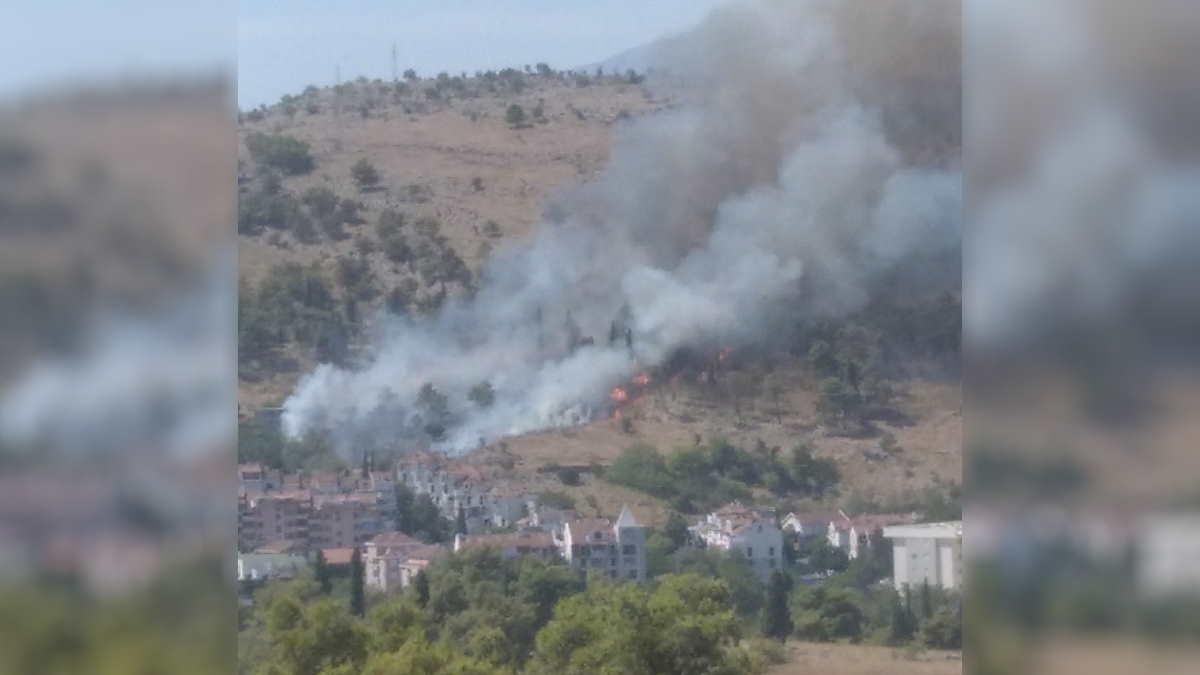 Черногория лесной пожар