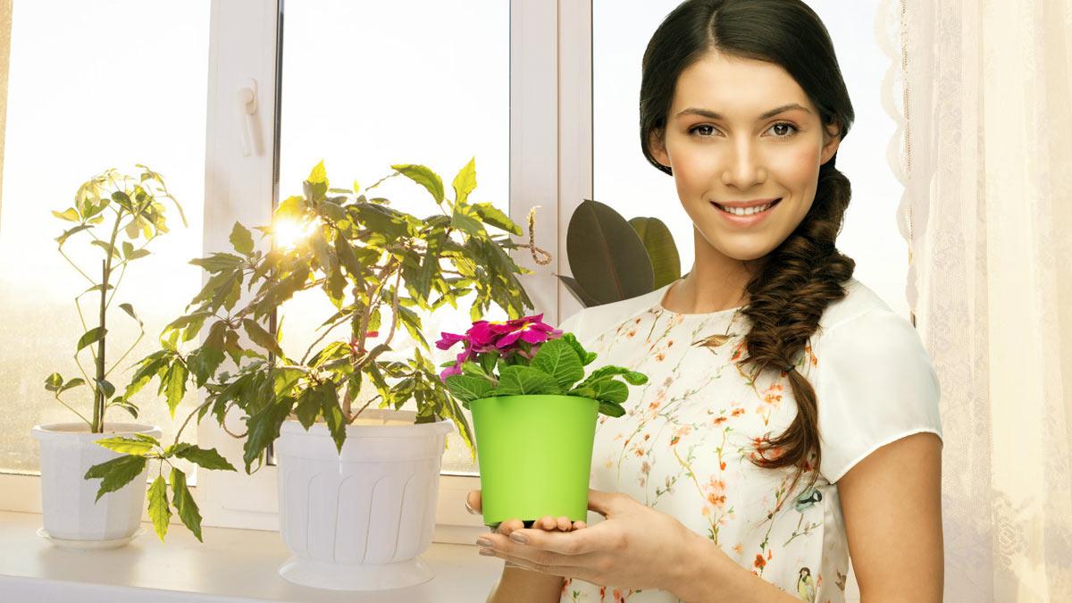 девушка с горшком цветов