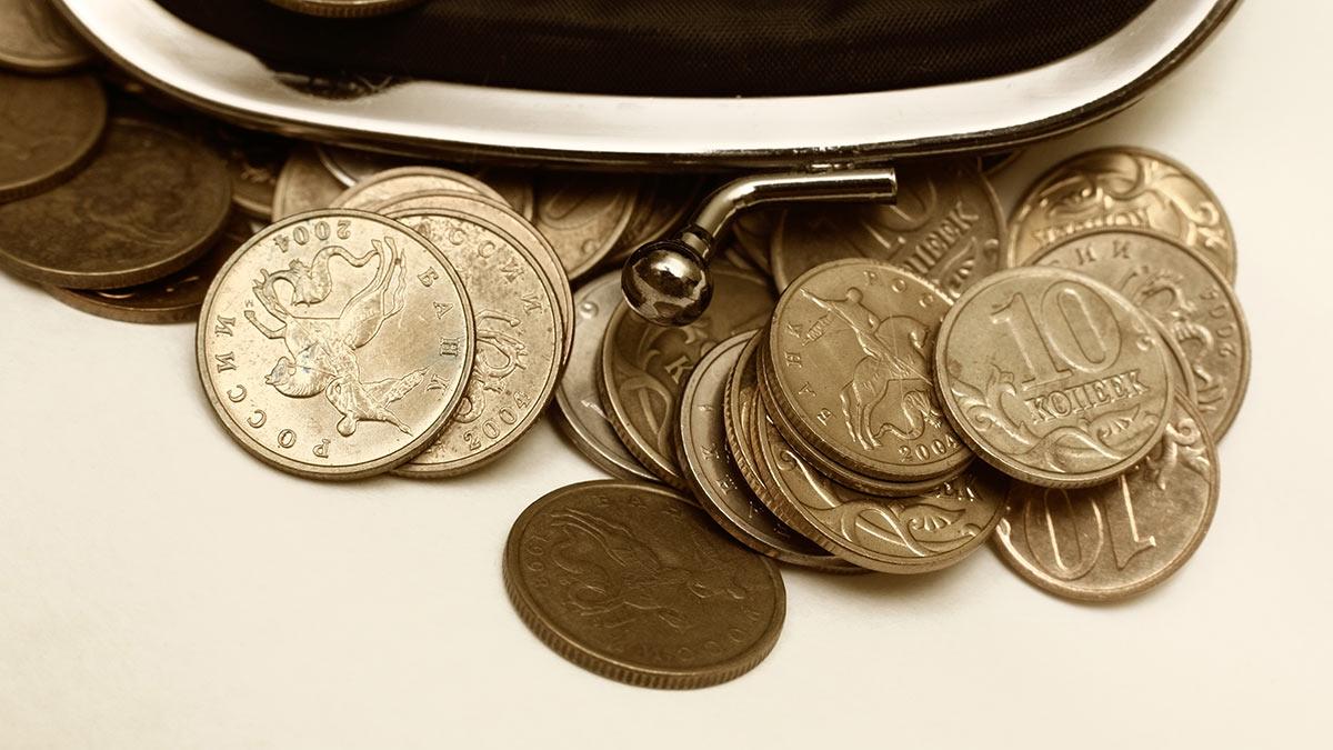 копейки монеты кошелек