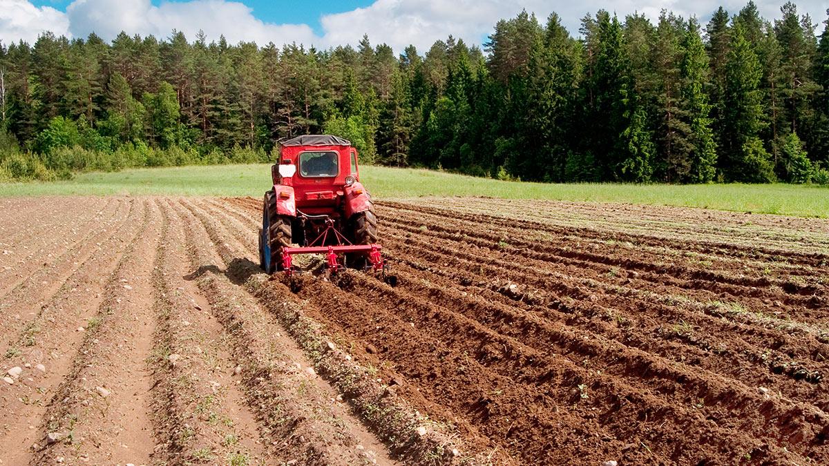 поле лес трактор земля