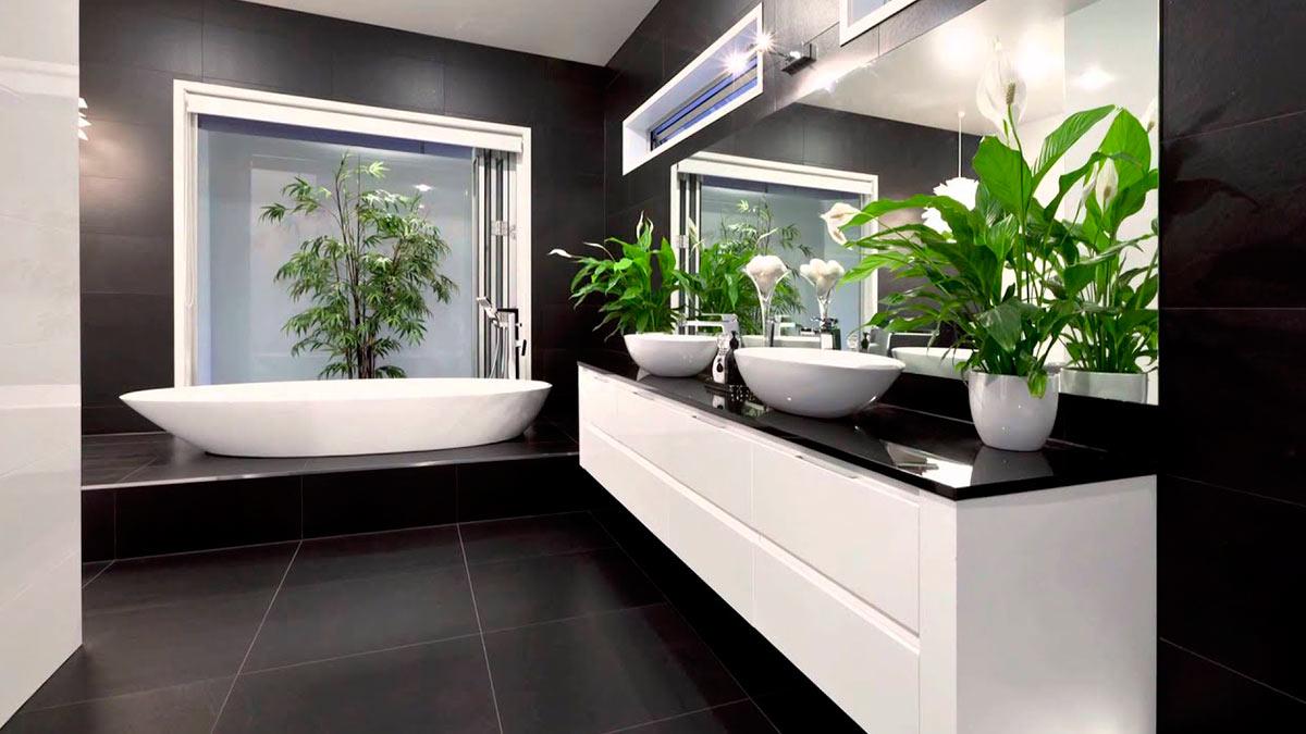 растения ванная комната