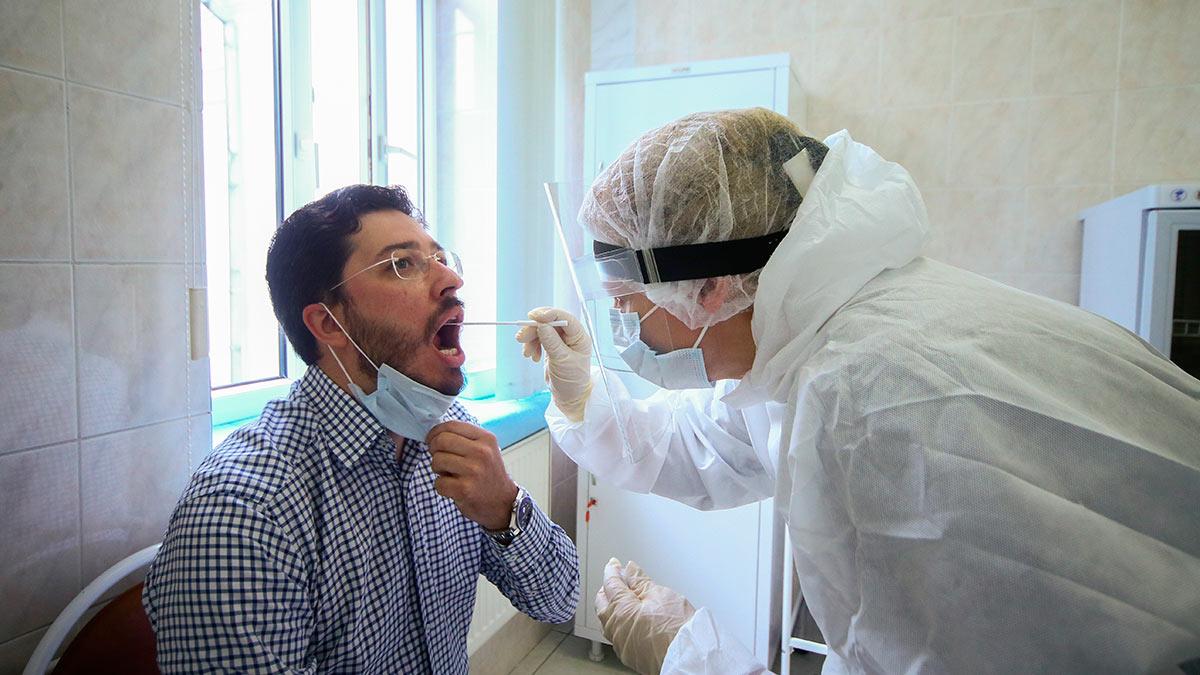 тестирование пцр