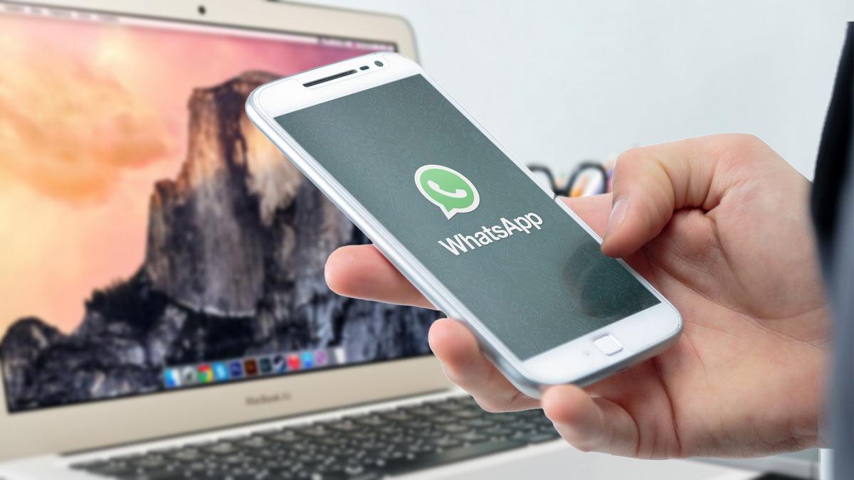 whatsapp мессенджер