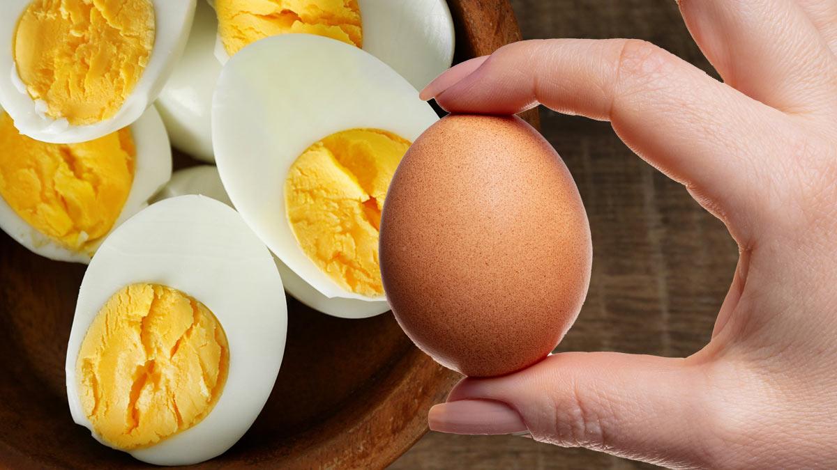яйца куриные польза
